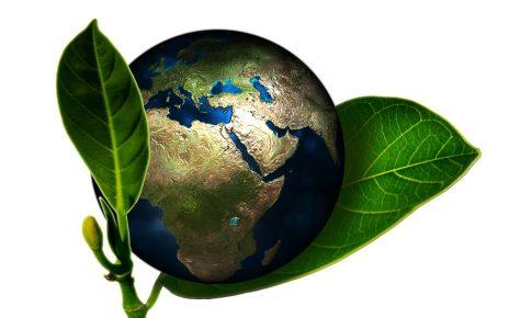 Linksammlung altea.me Klimawandel -Climate Change - Cambio de